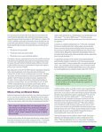 Soy Myths and Facts - SoyConnection.com - Page 5