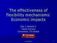 Economic impacts Developing country flexibility mechanisms