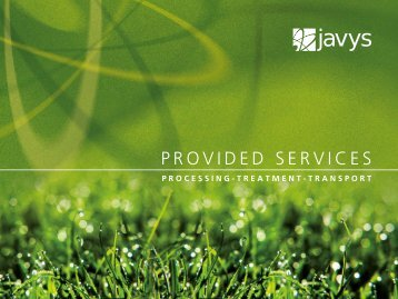 Provided ServiceS - Javys, as