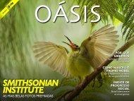 oasis196