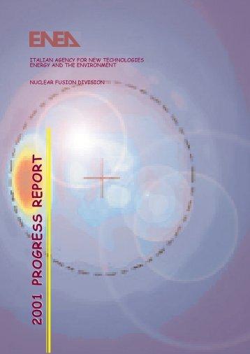 1. magnetic confinement - ENEA - Fusione