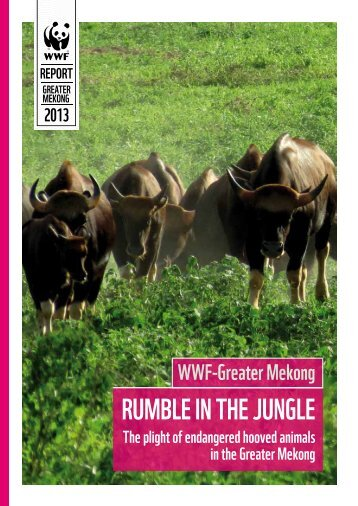 Rumble in the Jungle - WWF