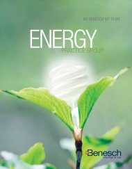 Energy Group Brochure - Benesch