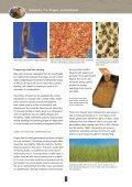 Pingao - Dune Restoration Trust - Page 4