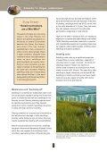 Pingao - Dune Restoration Trust - Page 6