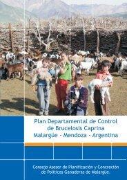 Brucelosis Malargüe 2009 - Plan Estratégico de Malargüe