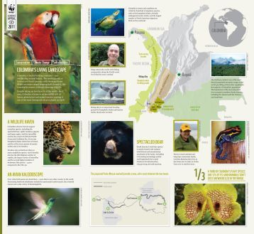 COLOMBIA'S LIVING LANDSCAPE - WWF UK