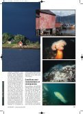 Octopus n° 51b - Jacquet Stephan - Page 2