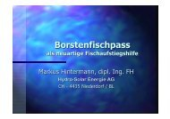 Borstenfischpass - HYDRO-SOLAR Engineering AG