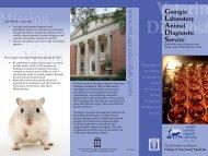 GLADS Brochure - University of Georgia College of Veterinary ...