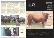'See you at the sale' - Simmental Australia