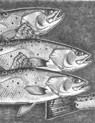 The Spotted Seatrout Fishery of the Gulf of Mexico, United States: A ...