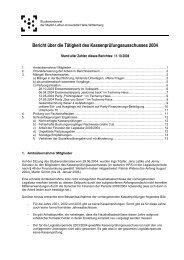 Bericht über die Tätigkeit des Kassenprüfungsausschusses 2004