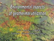 Environmental aspects of geothermal utilization - Georg