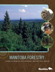 Manitoba Forestry Sustainable Forest Unit