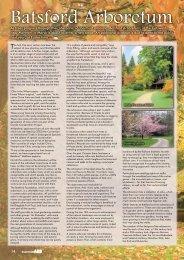 Batsford Arboretum - Forestry-Journal-essentialARB