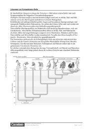 Innerhalb der Säugetierordnung der Primaten ( Bild unten - Cornelsen