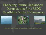 Projecting Future Unplanned Deforestation for a REDD Feasibility ...
