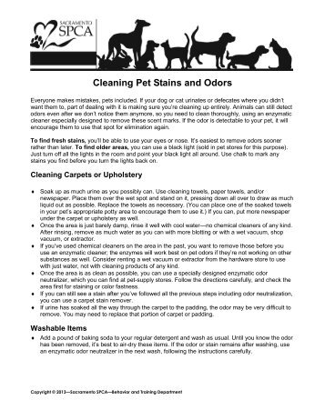 Cleaning Pet Stains and Odors - Sacramento SPCA