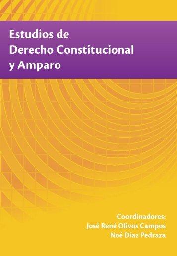 Estudios de Derecho Constitucional y Amparo - Instituto Politécnico ...