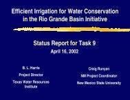 Task 9 - 2013 Rio Grande Basin Initiative Meeting