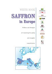 White book english.pdf - saffron project