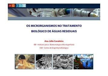 os microrganismos no tratamento biológico de águas ... - ESAC