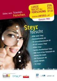 Steyr - RiS-Company