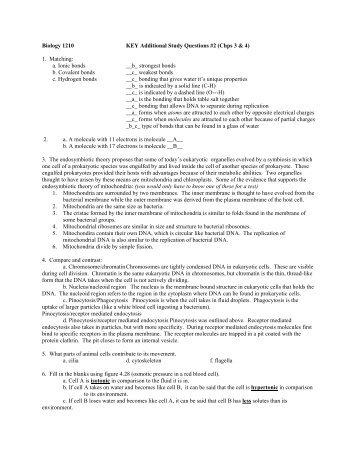 ap bio final exam essays