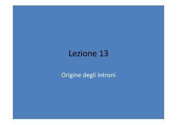 13_Origine degli introni.pdf - Sito dei docenti di Unife