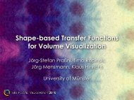 Shape-based Transfer Functions - Voreen