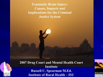 Implications for Criminal Justice System - Traumatic Brain Injury ...