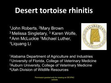 Desert tortoise rhinitis - University of Georgia College of Veterinary ...