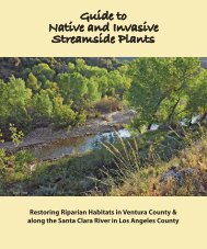 Guide to Native and Invasive Streamside Plants - County of Ventura