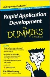 rapid-application-development-for-dummies-ebook