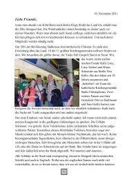 Rundbrief 32 vom 10.11.2011 - Baustelle Leben