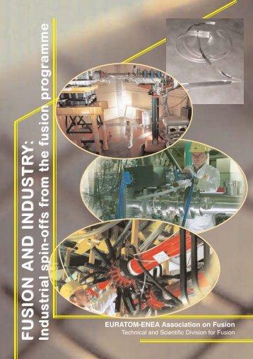 Fusion and Industry - ENEA - Fusione