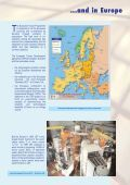 Fusion and Industry - ENEA - Fusione - Page 3