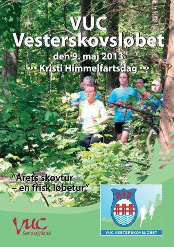 Flyer - 2013 - Haderslev IF