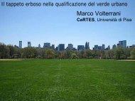 Il tappeto erboso nella qualificazione del verde urbano