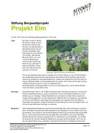 Stiftung Bergwaldprojekt Projekt Elm