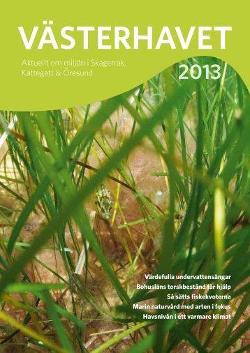Västerhavet 2013 - Havsmiljöinstitutet