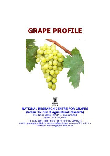 download Grape Profile - National Research Centre for Grapes