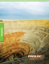Mineria - ProlecGE
