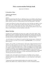 Šimsa – Podvojný deník.pdf