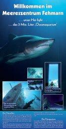 "unser Hai-light . . . . . . das 3 Mio. Liter ""Ozeanaquarium"""