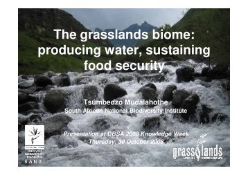 The grasslands biome: producing water, sustaining food ... - iwrm