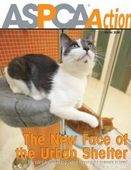 Winter 2006 - aspca