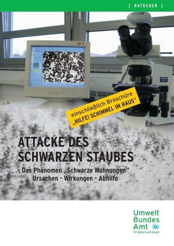 """Attacke des Schwarzen Staubes Das Phänomen """"Schwarze ..."""