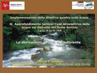 Le derivazioni: effetti sull'ambiente - Autorità di Bacino del fiume ...